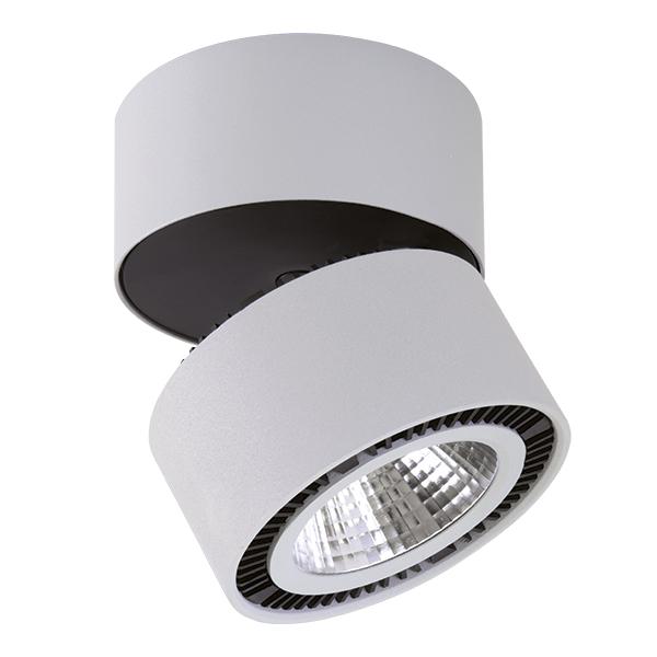 Светильник Lightstar Forte inca 213839