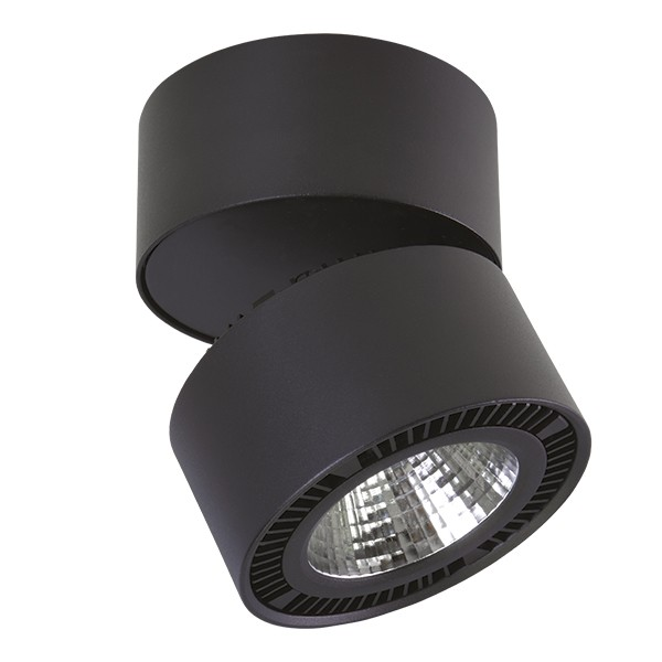 Светильник Lightstar Forte Muro 213857