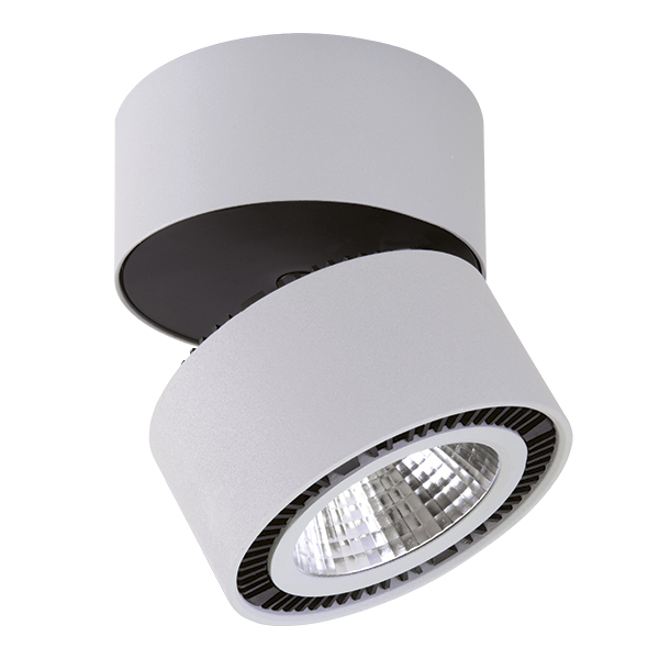 Светильник Lightstar Forte Muro 213859
