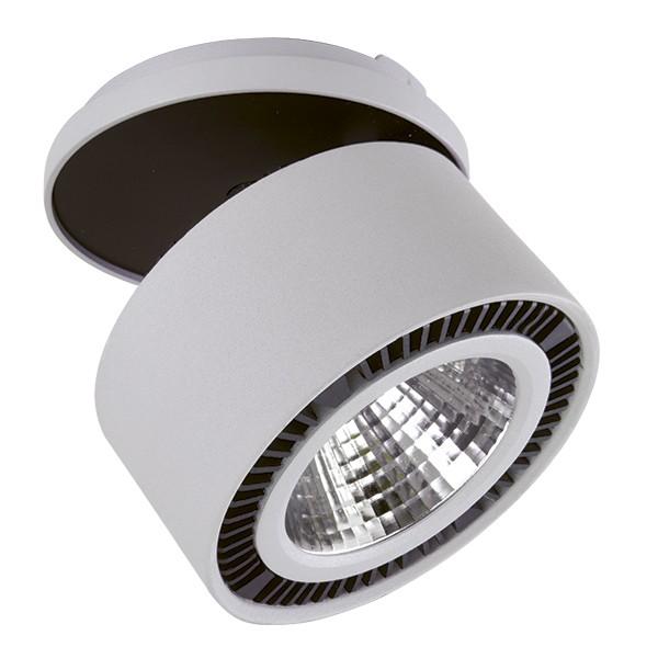 Светильник Lightstar Forte inca 214849