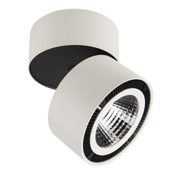 Светильник Lightstar Forte Muro 214850