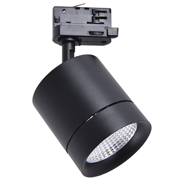 Светильник Lightstar Canno 301572