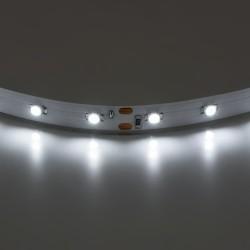 Lightstar Лента 3528LED 12V 4.8W/m 60LED/m 3-4Lm/LED IP20 4200K-4500K 200m/box НЕЙТРАЛЬНЫЙ БЕЛЫЙ СВЕТ, 400004