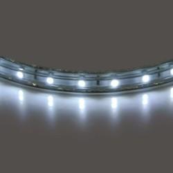 Светодиодная лента Lightstar 402004