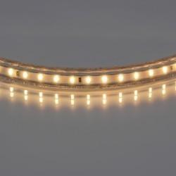 Lightstar Лента 220V LED 3014/120Р 5мм 10-12Lm/LED WW 100m/box 2800-3200K ТЕПЛЫЙ БЕЛЫЙ СВЕТ, 402032