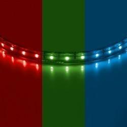 Lightstar  Лента 220V LED 5050/60Р 8мм RGB 50m/box, 402050
