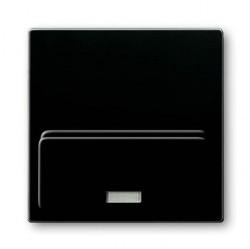 8200-0-0162 Плата центральная (накладка)для механизма док-станции Busch-iDock 8218 U, серия Basic 55