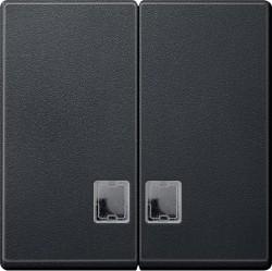 Клавиша двойная с линзами Schneider Electric MERTEN SYSTEM M, антрацит, MTN437514